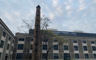 """杭州工业老厂房为城市制造""""新氧气"""""""